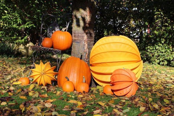 ハロウィンにかぼちゃの理由とは?