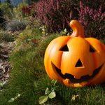 ハロウィンの意味って?仮装する意味やかぼちゃの理由とは?