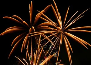 fireworks_00002 ヤシ (2)