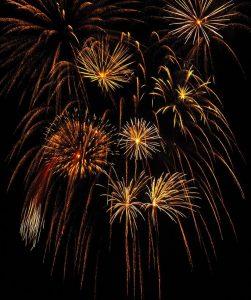 fireworks_00045 しだれ柳 (3)