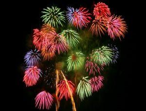 fireworks_00013 千輪菊 (2)