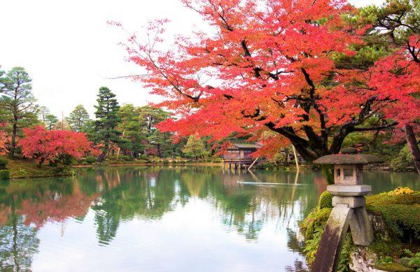 石川県:兼六園の紅葉&大桑おんま温泉