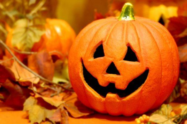 かぼちゃがダメになってしまう原因とは?