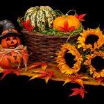 ハロウィンの飾りつけ時期とは?どこにどんなアイテムを飾りつける?