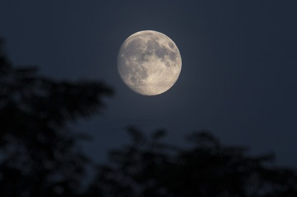 中秋の名月とは?