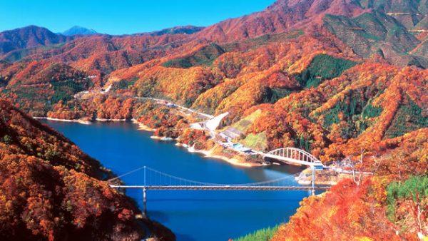 福井県:九頭竜湖の紅葉&九頭竜温泉