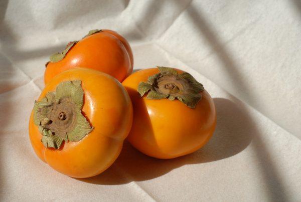 柿の栄養成分とは?