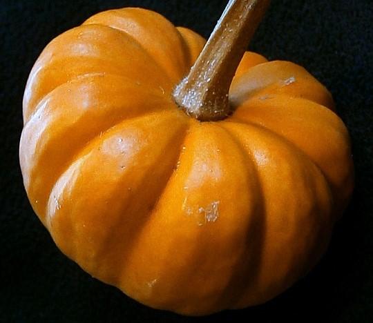 pumpkin-197615_960_720-2