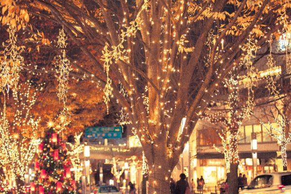 クリスマスデートの王道!クリスマスの雰囲気を存分に楽しむプラン