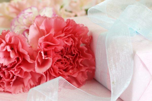 カーネーションは色別で花言葉が違う!?母の日に贈りたい花の色は?
