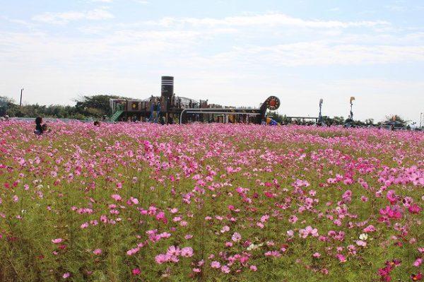 横須賀市:長井海の手公園 ソレイユの丘