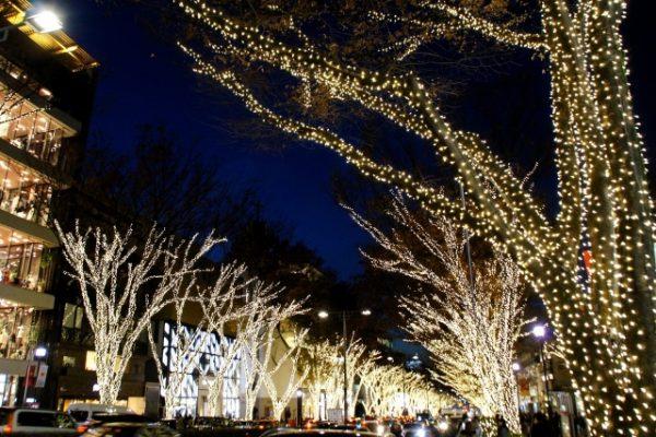 リゾート感を満喫できるクリスマスディナープラン